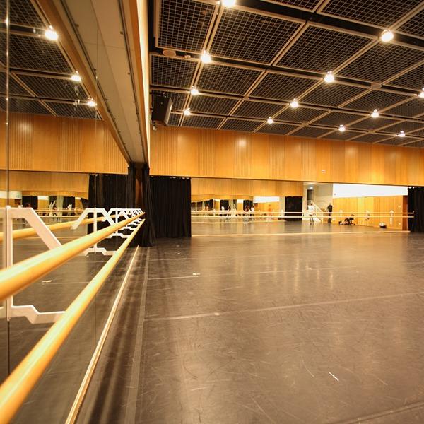 Ballet and Dancing room