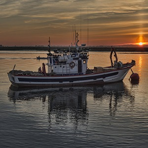 Commercial Fisher Boat in Water